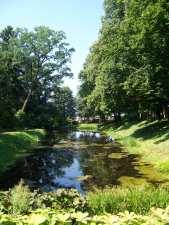 Park dworski w Drozdowie